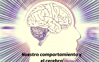 Comportamiento, conducta y cerebro