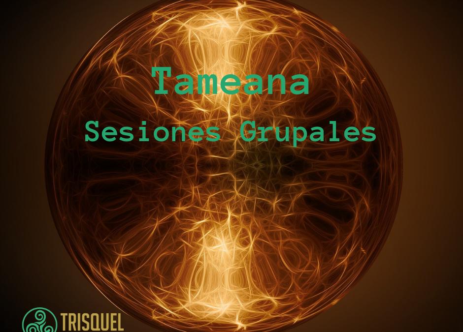 Sesiones grupales de Tameana